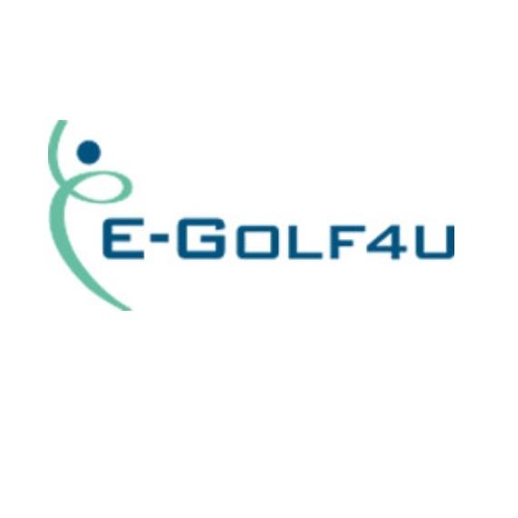 e-golf4u-kassanet-pieterse-kassakoppeling.jpg